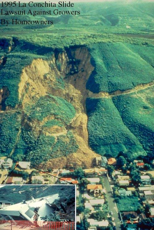 1995LaConchitaSlide