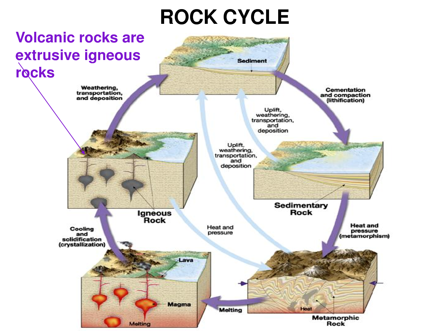 rock cycle This cutaway view of earth shows where some common rock-forming processes occur embedded animations will illustrate the path of a rock moving through the rock cycle.